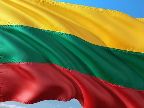 МИД Литвы потребовал отпустить севший в Минске самолет