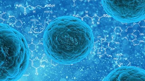 Минздрав Вьетнама сообщил о появлении нового варианта коронавируса