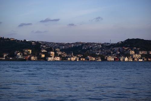Мраморное море в районе Стамбула покрылось слизью