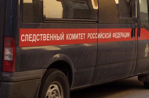Задержан подозреваемый в убийстве двух женщин в Новой Москве