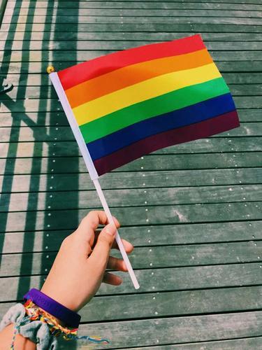 Рига: Балтийский прайд ЛГБТ меняет программу