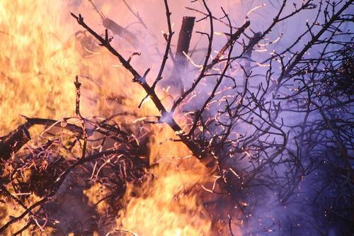 Власти Турции сообщили о более 180 пострадавших из-за пожара в стране