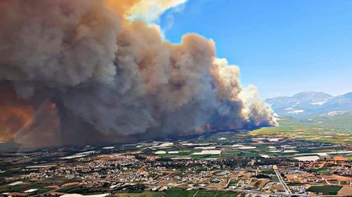 Эвакуация туристов из Турции в связи с лесными пожарами пока не планируется
