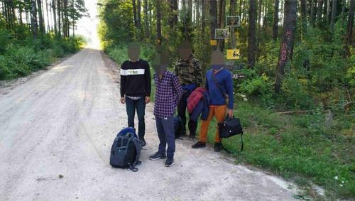 Представитель Службы охраны госграницы Литвы  Мишутис: Если нелегалы раньше переходили границу ночью, то теперь круглые сутки