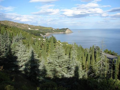 В Крыму ожидается чрезвычайная пожароопасность