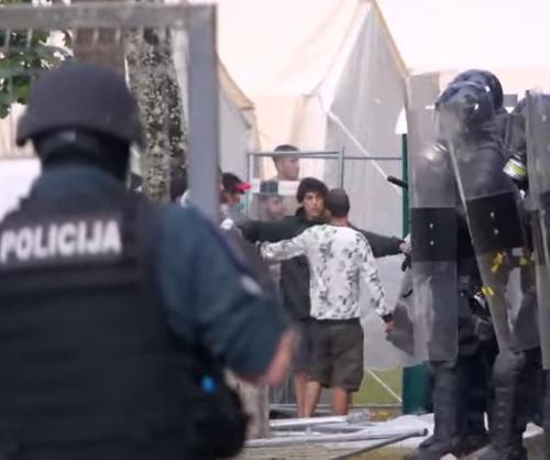 Откровенный разговор: можно ли договориться с нелегалами, которые «захватывают» Прибалтику