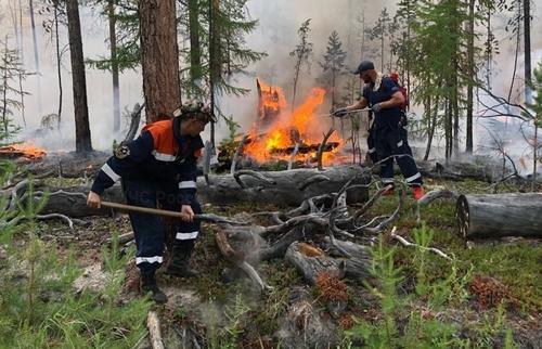 Жители Якутска задыхаются от горящих лесов, смог и горечь стоят в воздухе