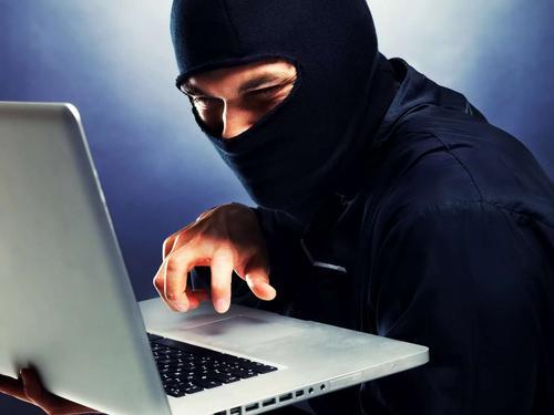 В России растет число случаев кибермошенничества
