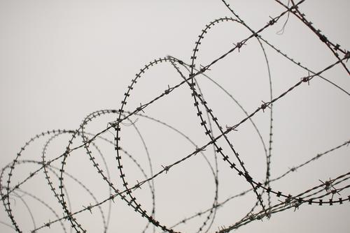 Эксперты из Белоруссии сообщили, что гражданин Ирака скончался на границе с Литвой из-за шока от потери крови