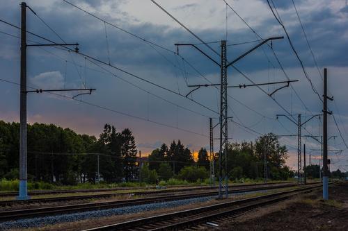 В районе станции Храпуново в Подмосковье под колёсами электрички погибли цирковая дрессировщица Херц и её муж