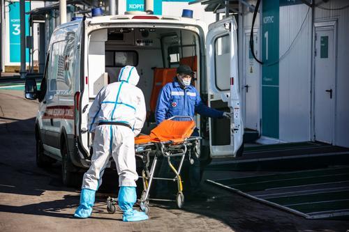 Эпидемиолог Пшеничная сообщила о сохранении коронавируса в кишечнике спустя несколько месяцев после болезни