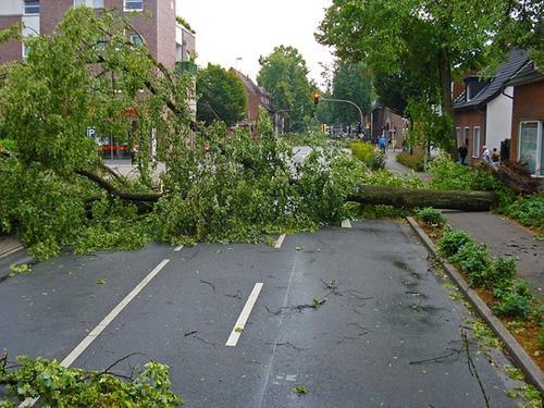 Ураган снес крышу Уральского федерального университета в Екатеринбурге