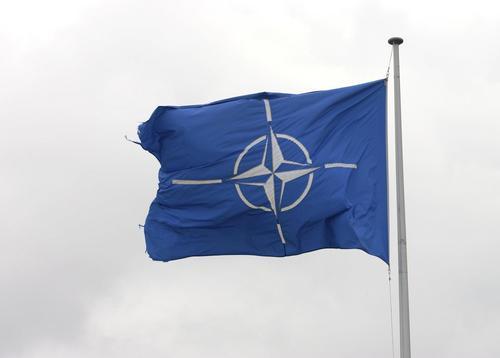 Американский военный аналитик Рик Розофф: Грузия и Финляндия помогут НАТО в изоляции России от Арктики до Кавказа