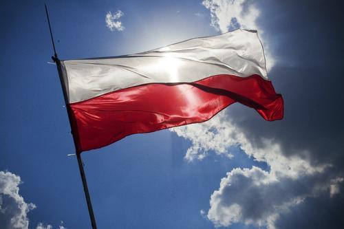 В Польше задержали бродившего по улицам Свидцины обнаженного пьяного прокурора