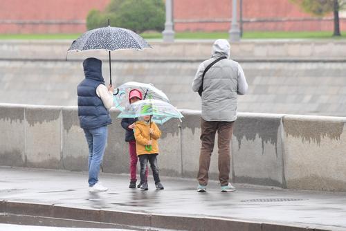 Метеоролог Тишковец заявил, что в Москве в понедельник выпало рекордное количество осадков