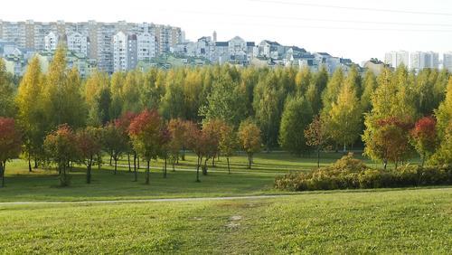 Синоптик Тишковец заявил, что на следующей неделе в Москву придет бабье лето