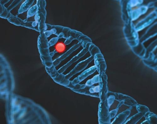 Мясников объяснил, как генетика влияет на заболеваемость коронавирусом