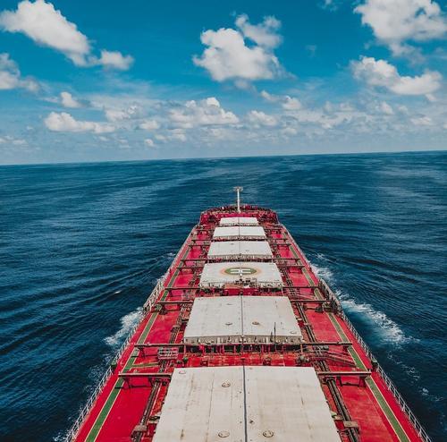 В судоходной компании «Волжское пароходство» назвали причину столкновения сухогрузов в Босфоре