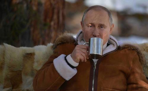 Во время отдыха в Сибири в машину Путина чуть не врезалось стадо «огромных» маралов