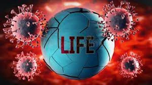 В Москве открылась выставка «Жизнь с вирусами»