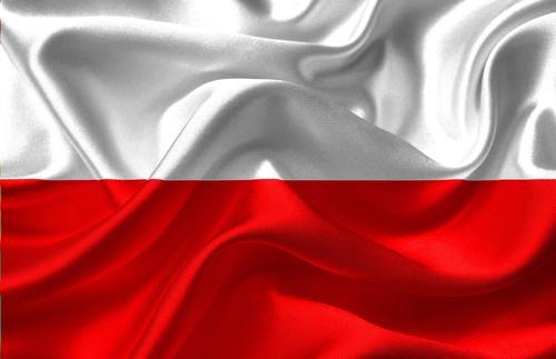 Политолог Пискорский прокомментировал выход Польши из ЕС