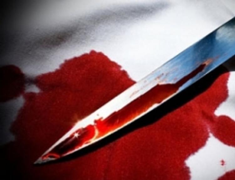 Под Иркутском домработница с другом убила хозяев квартиры