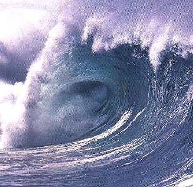Ученые предупреждают: Мировой океан киснет