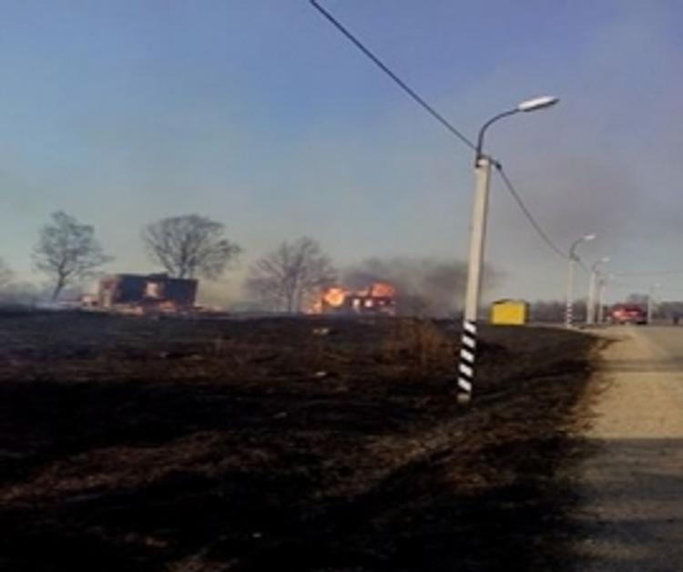 В Тверской области полыхали дома из-за горящей сухой травы