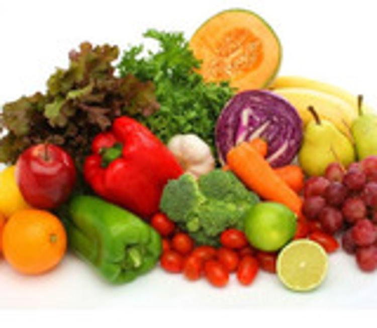 Аграрии Нидерландов обеспокоены запретом на импорт продукции в Россию