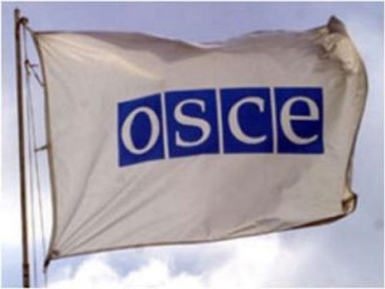ОБСЕ гарантировала безопасность экспертов на Украине