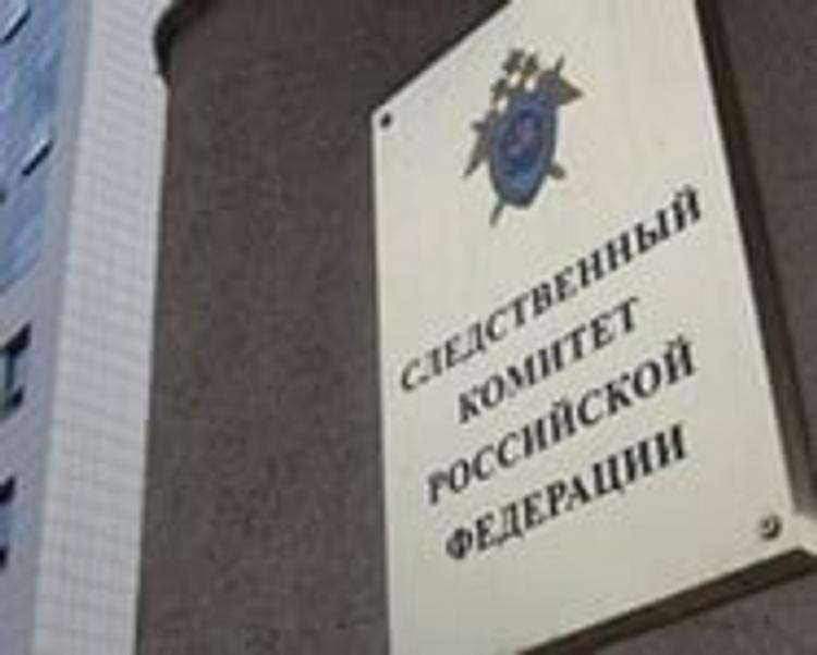 """СКР: Пятеро из 10 членов """"банды ГТА"""" арестованы"""