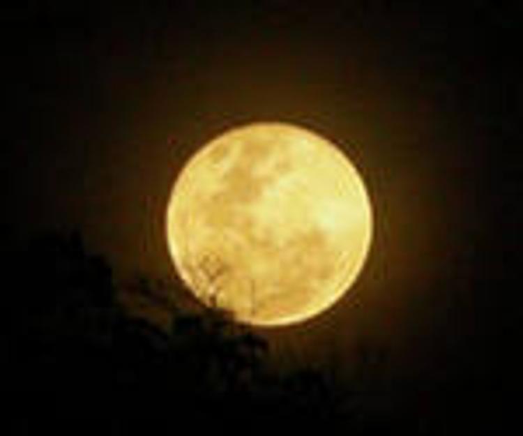 NASA построит на Луне завод по переработке  фекалий в топливо
