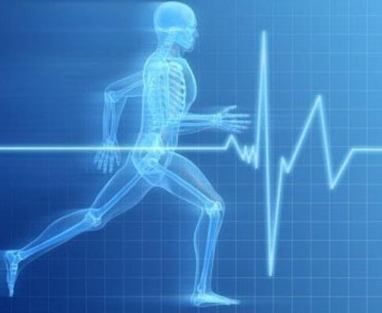 Ученые: Наличие цели в жизни снижает риск сердечно-сосудистых заболеваний