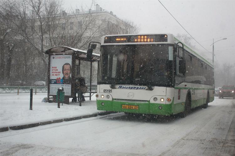 Во Львовской области иномарка врезалась в остановку: погибли пятеро