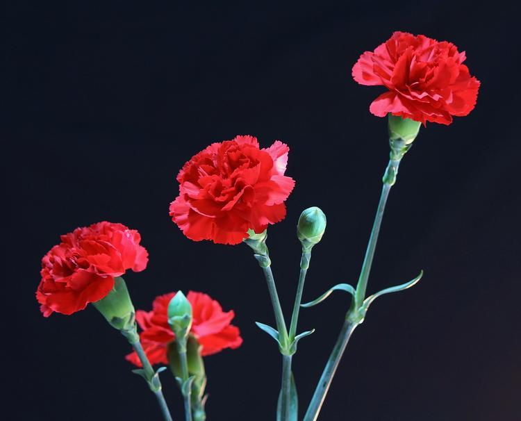 В Германии почтили память советских военнопленных