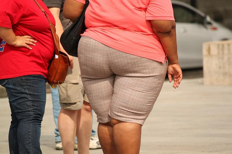 В США растет количество людей, страдающих от ожирения