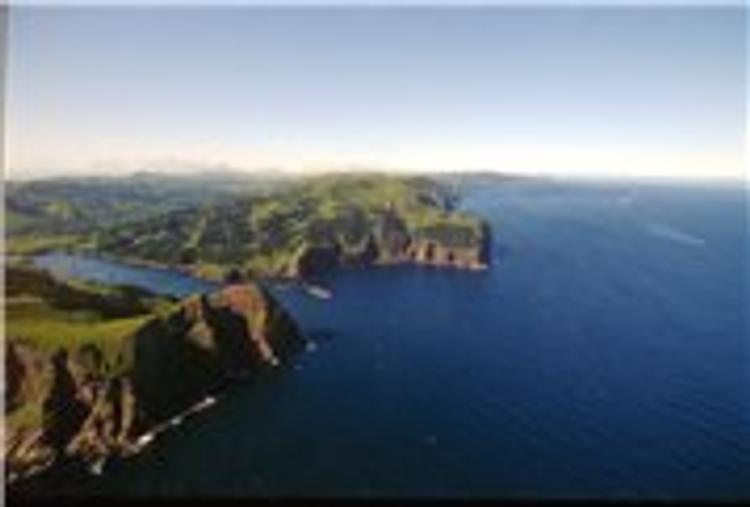 Японии не понравился визит главы Минздрава РФ на остров Шикотан