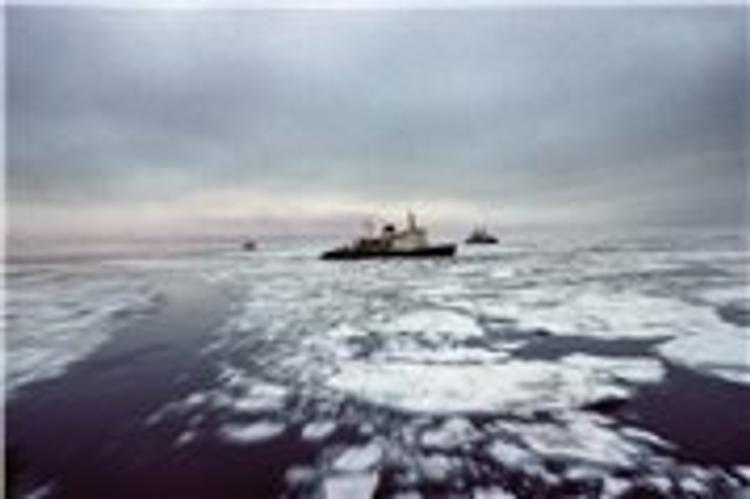 Путь к Новосибирским островам кораблям ВМФ проложит ледокол