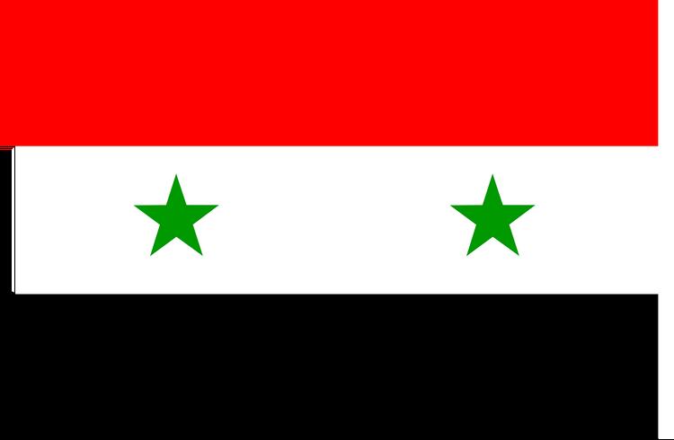 Делегация из Госдумы и Совета Федерации прибыла в Сирию
