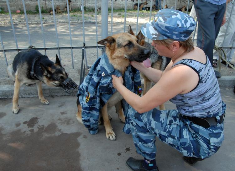 Казанский и Ленинградский вокзалы в Москве экстренно эвакуируют