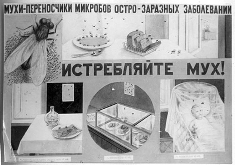 Суп с мухами - новинка в меню волгоградского кафе