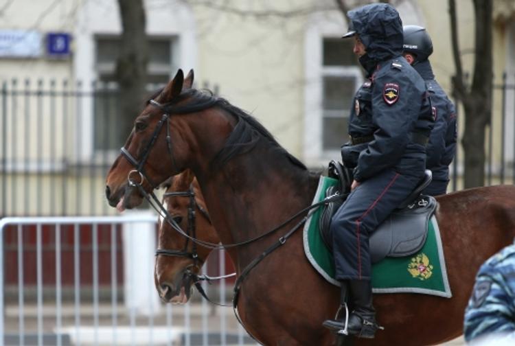 В Москве иномарка сбила конного полицейского (ВИДЕО)