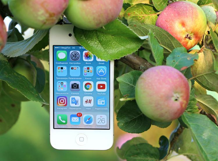В США супруги подали в суд на Apple после аварии, в которой погибла их дочь