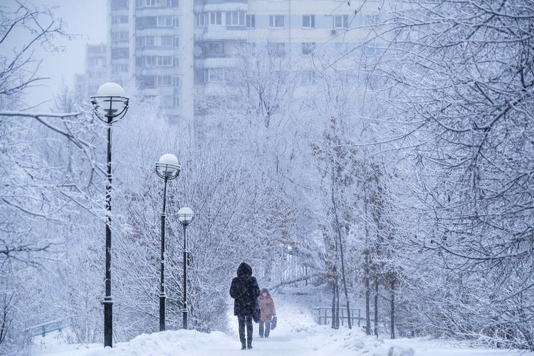 Более 20% месячной нормы осадков выпало в Москве за минувшие сутки
