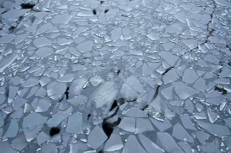 Под Магаданом машина с пятью людьми в салоне провалилась под лед