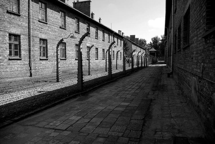 На магаданца завели уголовное дело за реабилитацию нацизма