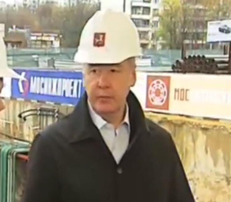 Собянин поддерживает идею строить в Москве деревянные дома