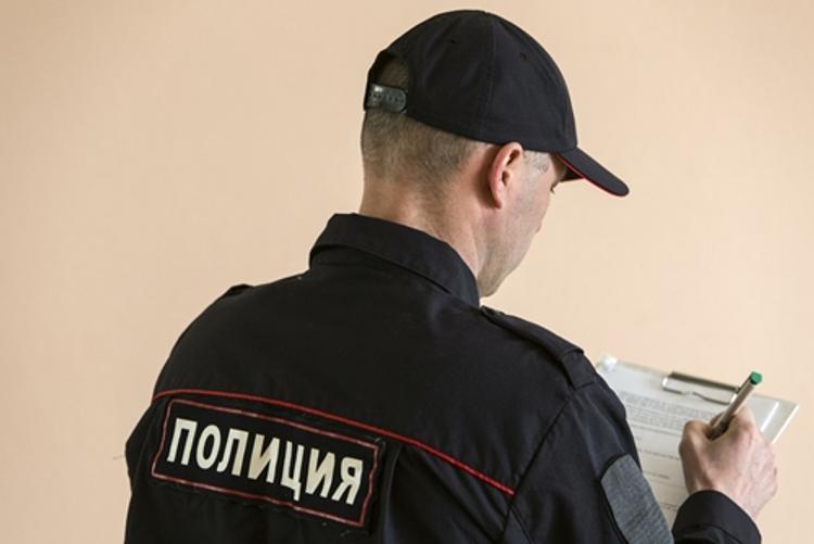 В Подмосковье силовики обыскали коттедж писателя-экстремиста