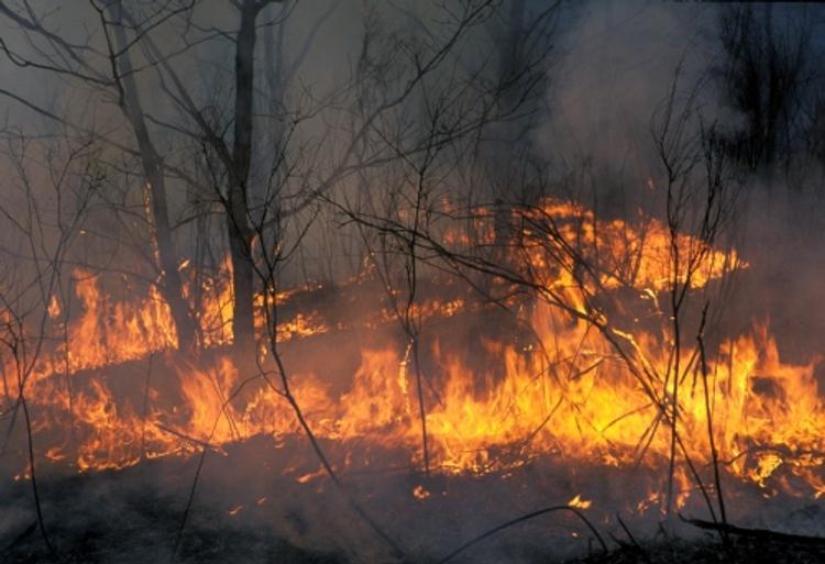В Иркутской области снова растет количество пожаров