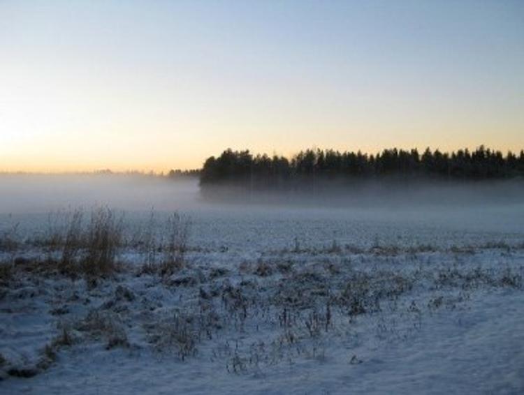В Самарской области похолодало на 30 градусов и выпал снег